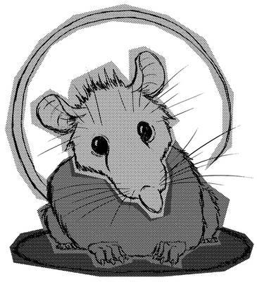 Round Ratty