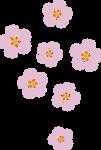 G1 Peach Blossom cutie mark