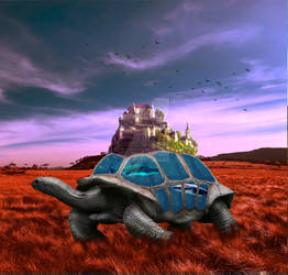 Tortoise Waterbrown-grass-1756325