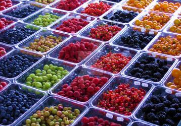 Summer Berries by zaphotonista