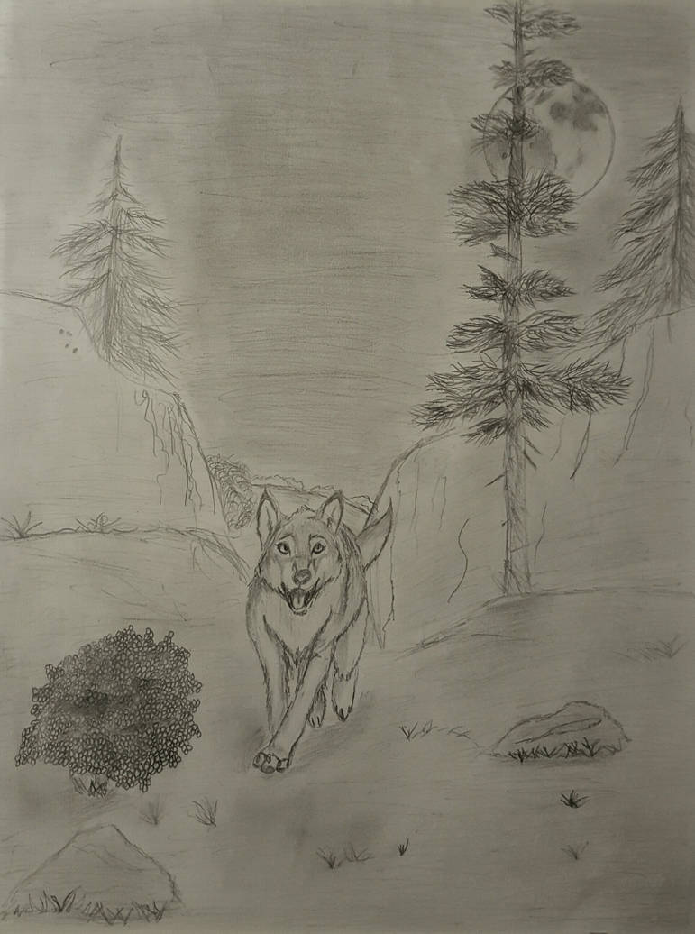 Moonlight Sonata: Moonlit Run