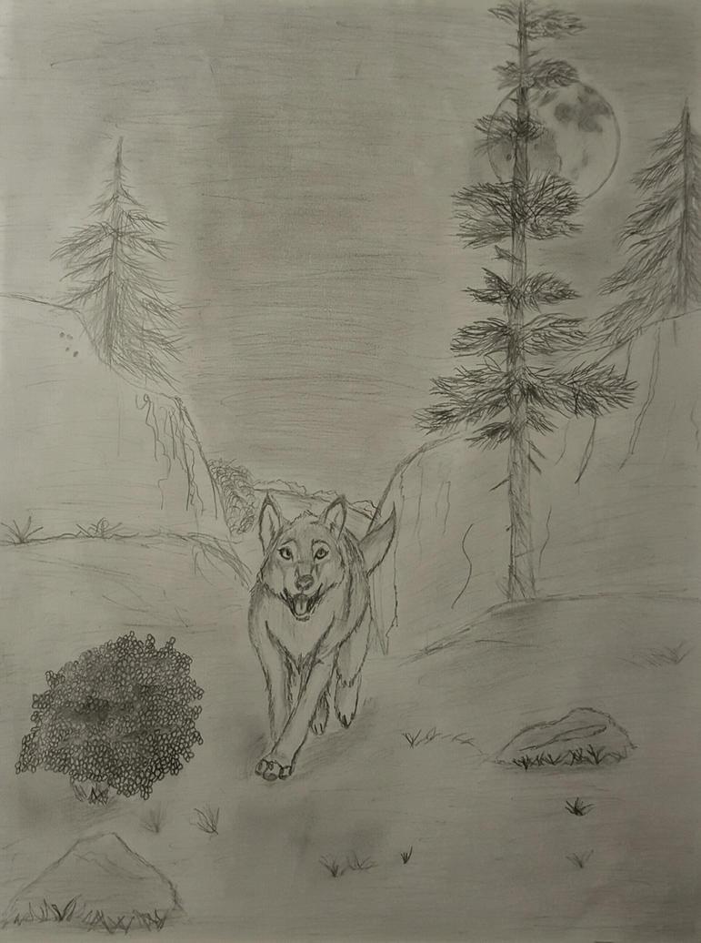 Moonlight Sonata: Moonlit Run by ShadowNighthunter