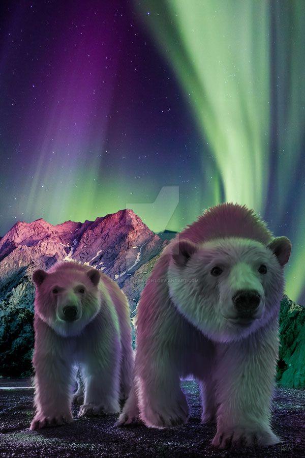 Polar Duo by GuardianDragon1