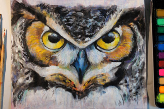 painting an owl - part 3
