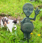 Alien and the One Eyed Cat