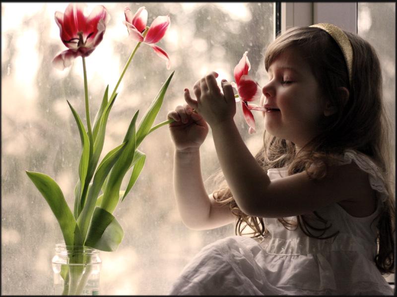 Reading the ideas of flowers by mechtaniya
