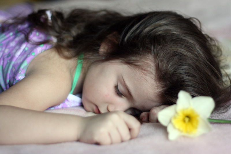 The sleeping beauty...