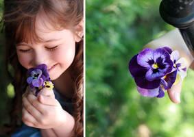 Flowers... by mechtaniya