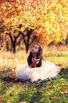 To feel an autumn....