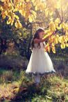 The sun... Autumn...