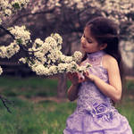 about the delicate spring...