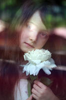 Gentle dreams... by mechtaniya