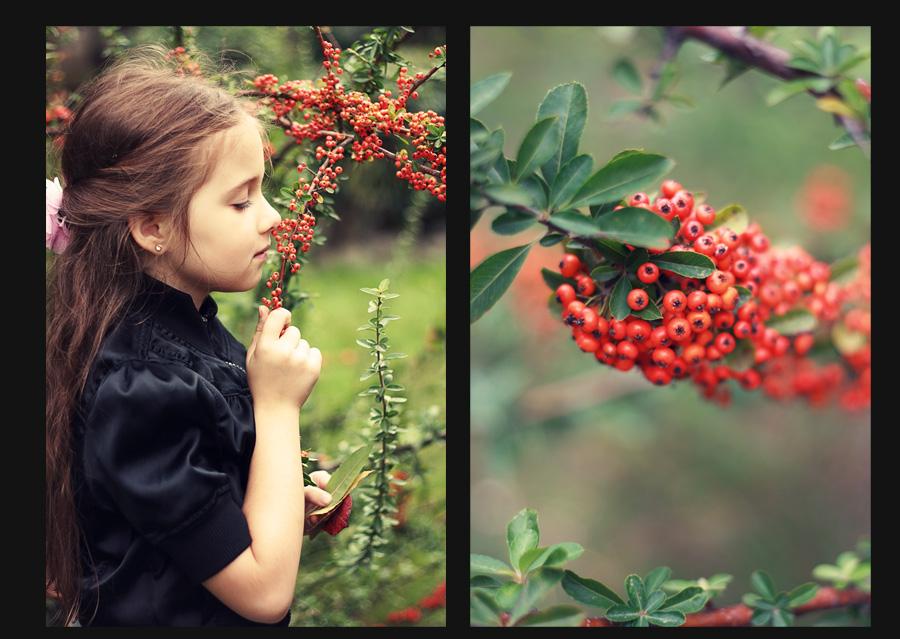 autumn by mechtaniya