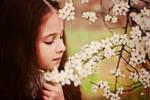 Gentle... spring...