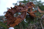 Layered Leather Leaf Mask