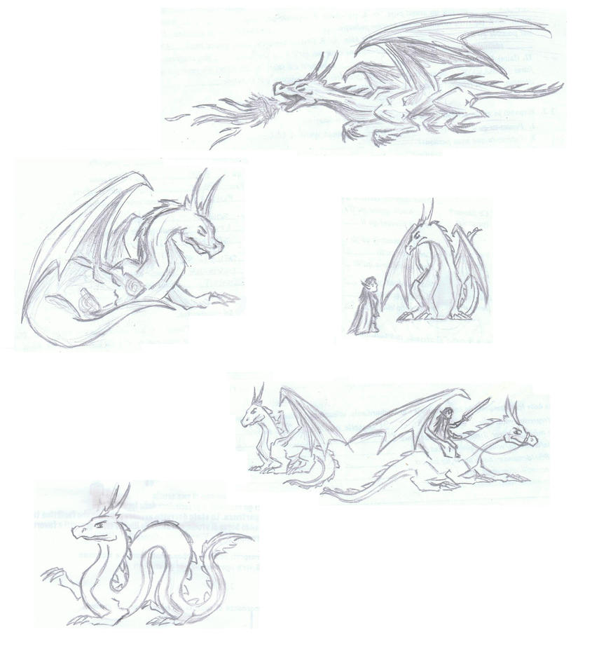Dragon sketches by SWJediKnight