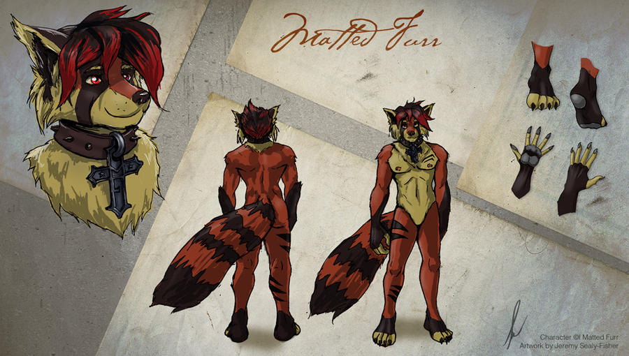 Matted-Fur-Ref-sheet-Final by TicoabyGrey