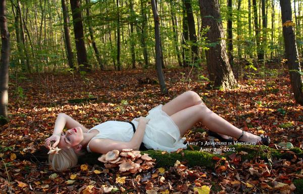 Amely's Adventures in Wonderland by TheBizarreBirdcage
