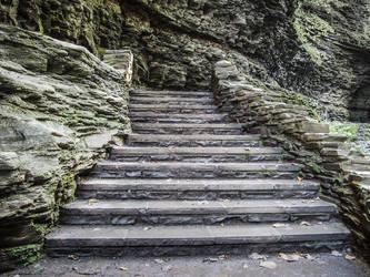 Steps by ChrisReach