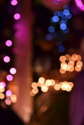 Lights of the Festival