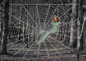 First try at a spider web by paulm131