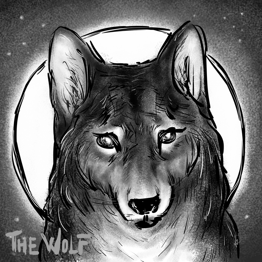 Power Animals: the Wolf by AlessiaHV