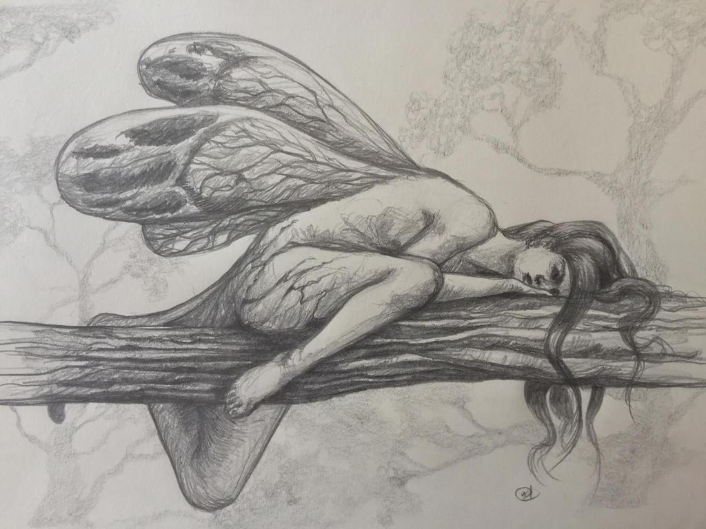 Metamorphosis  by AlessiaHV