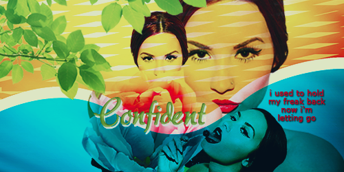 Firma Confident by SilvanaLB