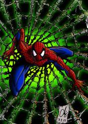 Spider-Man by Quicksilver-Z