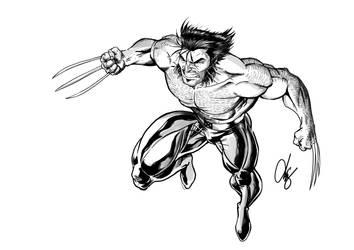 Wolverine -- Quicksilver_Z by Quicksilver-Z