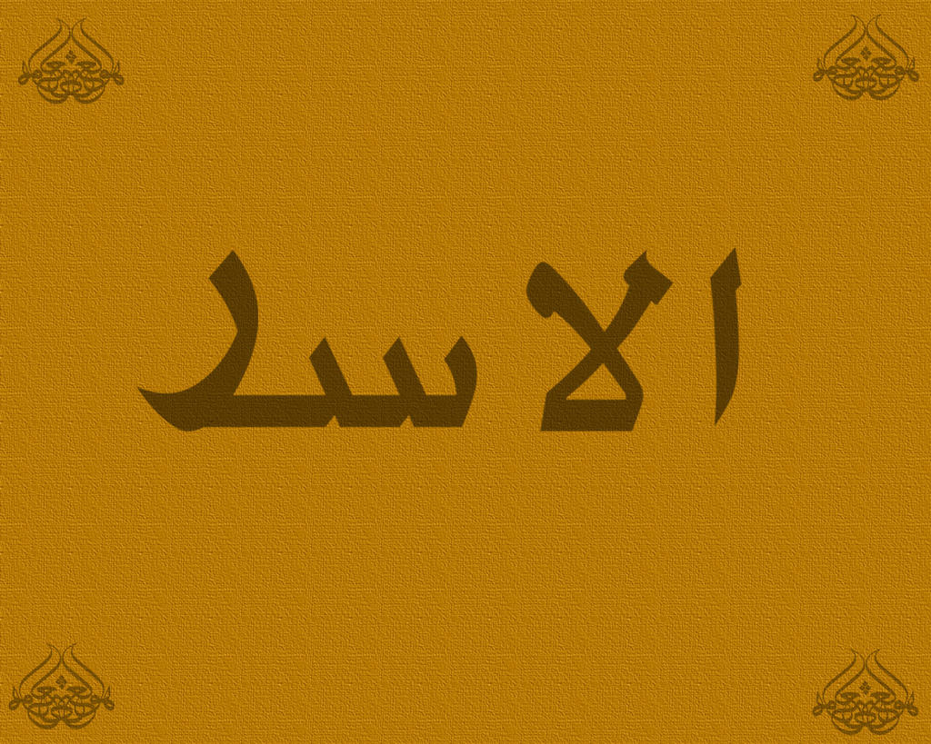 Lion Arabic by AmirSakiri