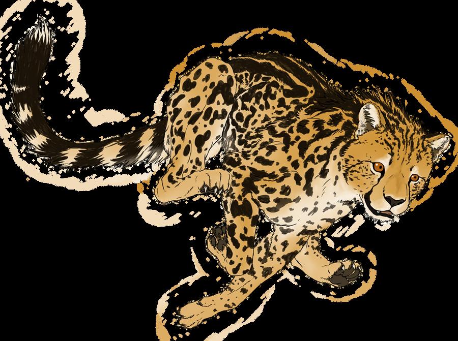 King Cheetah In Flight By Veggie Raptor On Deviantart