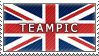 TeamPiC Stamp by TeamPiC