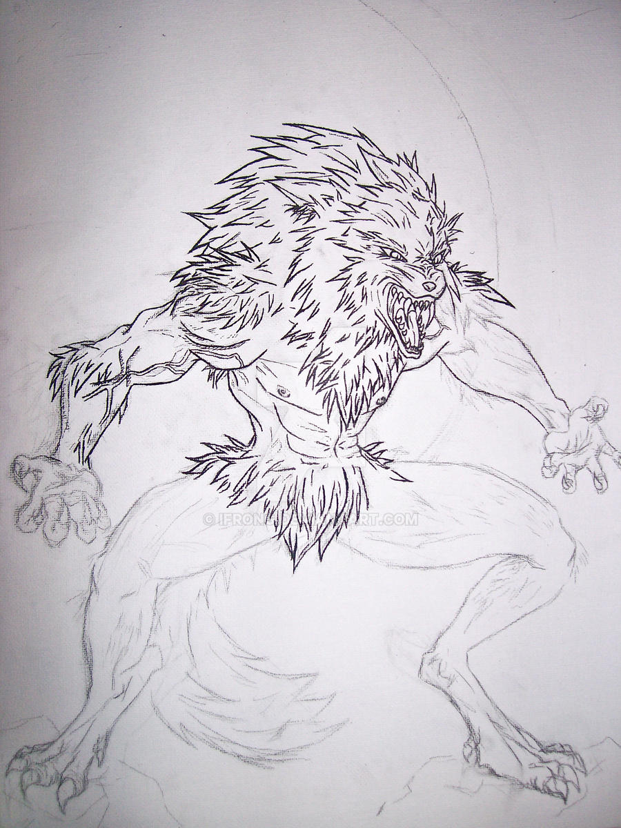 Werewolf - Half Outline by ifrong on DeviantArt