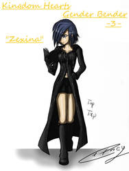 Kingdom Hearts Gender Bender 3 by Cathey18
