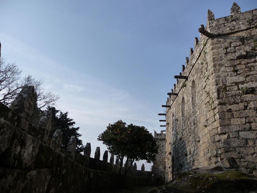 Castelo de Soutomaior_16 by abelgalois