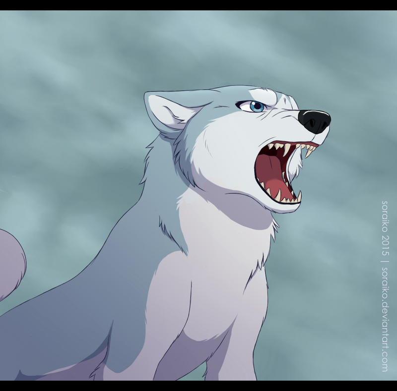 Silver Fang by Soraiko