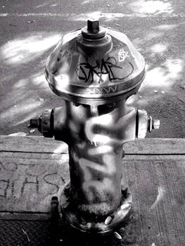 Hydrant in the shadows by Cericonversion