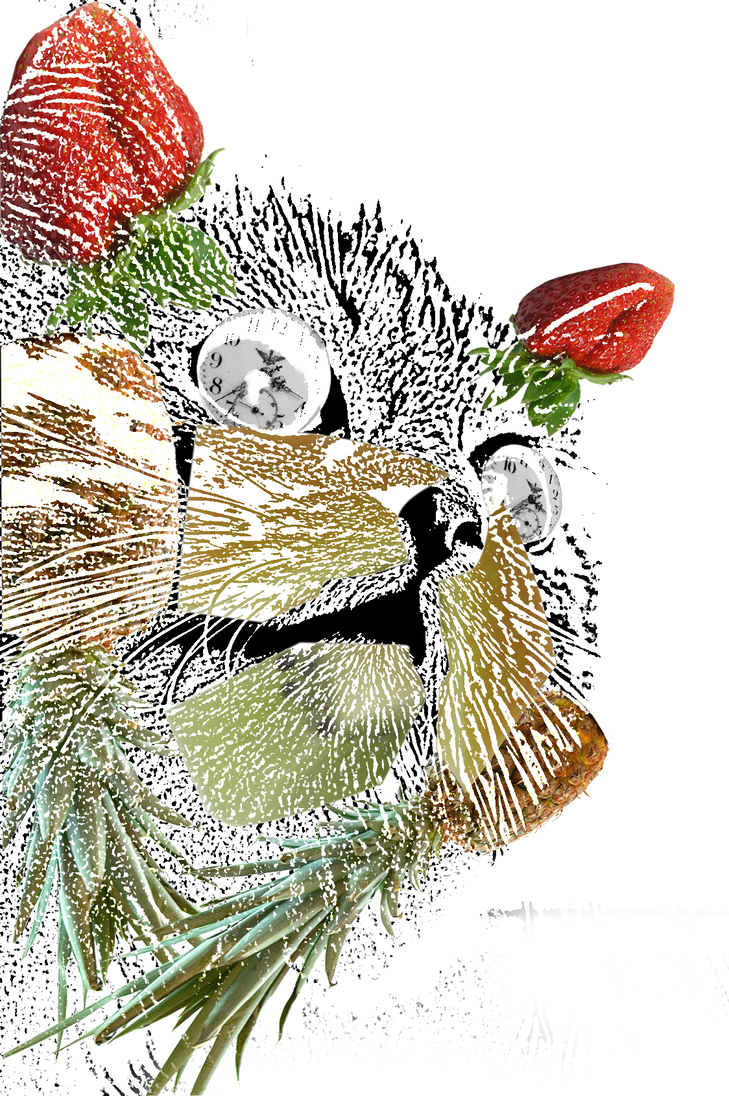 Fruity Kitty of TIME by LaZerWuf