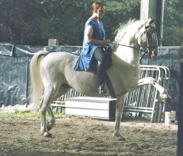 Post your favourite picture of your horse... Me_and_Nobi2_by_the_other1