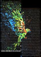 Les couleurs ont des ailes by JessicaSansiquet