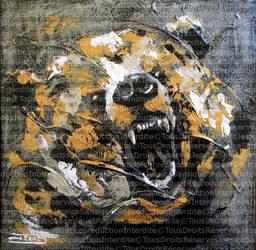 Silver Bear by JessicaSansiquet