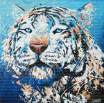 Le royal tigre blanc