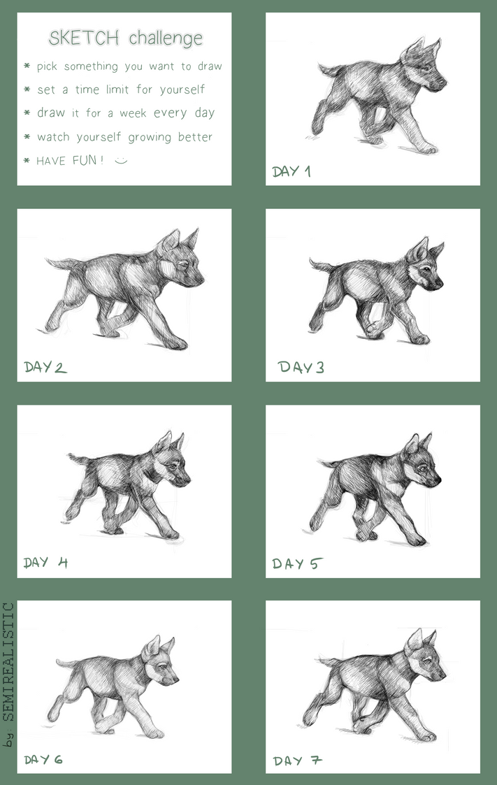 How to draw a wolf pup howling