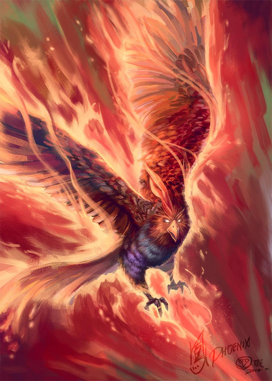 Phoenix by phomax