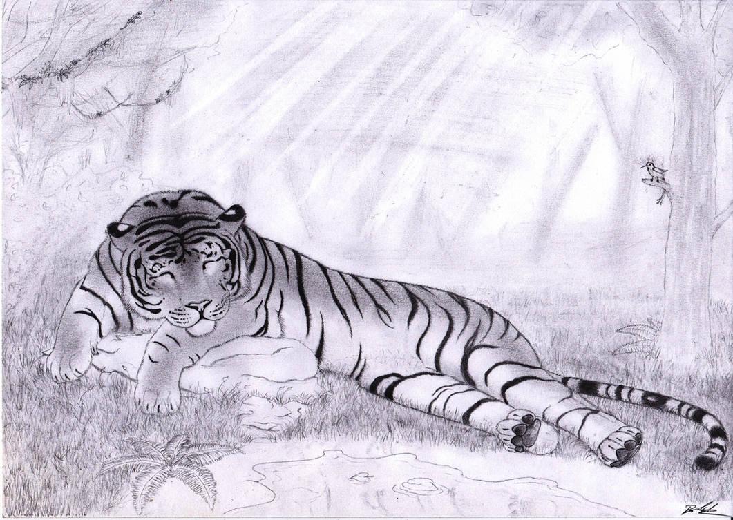 Sleepy Stripes