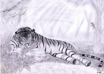 Sleepy Stripes by Favenatig