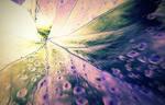 Journey Beyond The Light by Favenatig