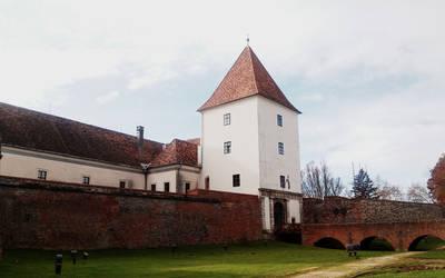 Sarvar castle by Favenatig