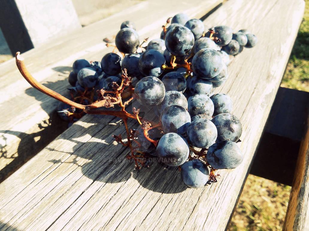 Grapes n' Wood
